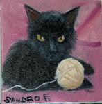 Falletta Sandro - CHAT YOYO