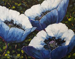 Richard T Pranke - Azul Poppies_sold