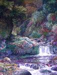 Charly Lesquelin - Cachoeira Grand-Galet